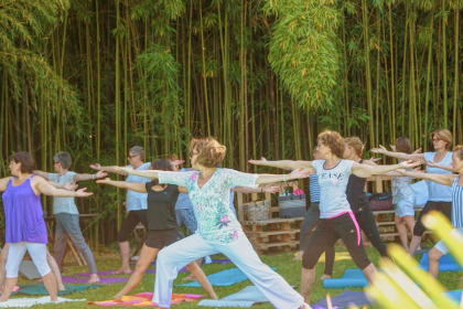 Hatha Yoga  Centre  ODELYS GAILLAC TARN 2