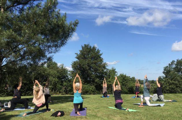 Stage Hatha Yoga, Relaxation, méditation.   29 et 30 Août 2020. Animé par Véronique Costes. Reste 2 places.